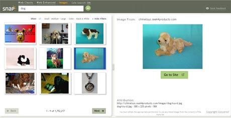 snap.com offre anche un buon servizio di ricerca di immagini