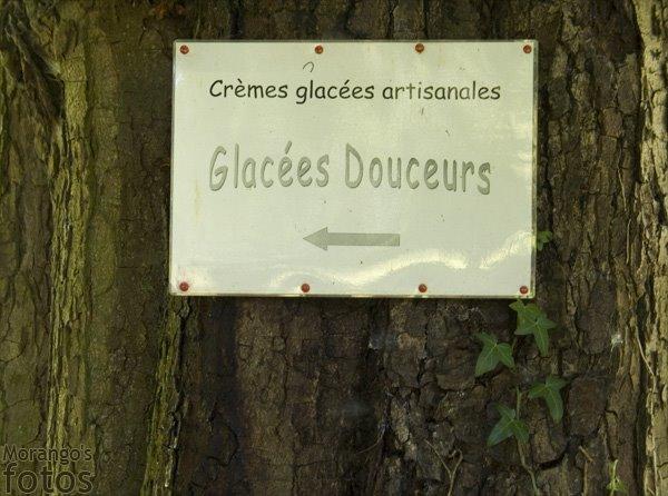 Crême glacée artisanale - Lombise - Hainaut - Belgique - Anne-Sarine Limpens 2008