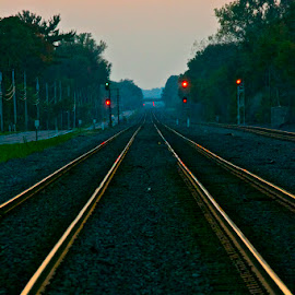 Kirkville Tracks by Rick King - Transportation Railway Tracks ( railroad tracks, kirkville, sunset, railroad, ny )