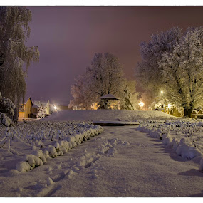 Winter at park by Vanja Vidaković - City,  Street & Park  Night (  )