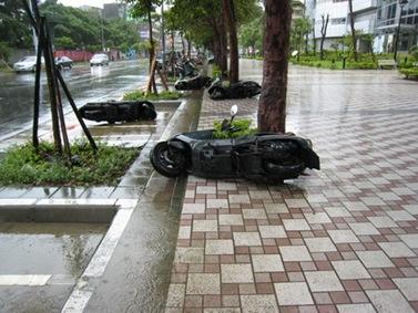 NKSP_typhoon03