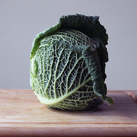 cabbage  by Requete Rebe - Food & Drink Fruits & Vegetables (  )