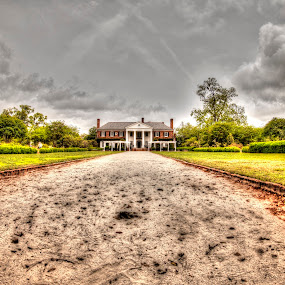 Boone Hall Plantation by Cathie Crow - Buildings & Architecture Public & Historical ( historical landmarks, hdr, boone hall, plantation )