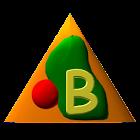 Basic Pro icon