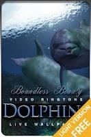 Screenshot of dolphin weather ringtone