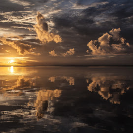 Mirror Images by Shelley Patterson - Landscapes Sunsets & Sunrises