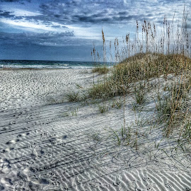 This way to the beach by Tommie Davis - Landscapes Beaches ( clouds, sand, vacation, sky, grass, travel, beach, north carolina )