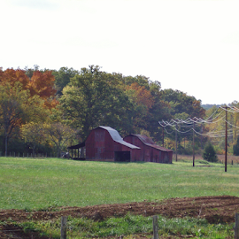 barns in field in the fall by Helen Harbison - Landscapes Prairies, Meadows & Fields ( field, green field, fall colors, fall, barns, farm field, color, colorful, nature )