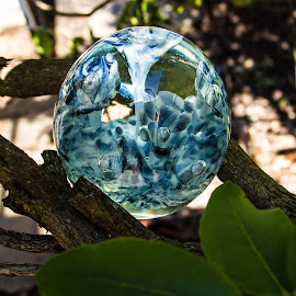 In The Branches by Lisa Hendrix - Artistic Objects Other Objects ( ball, tree, blue, green, white, earth, crystal )