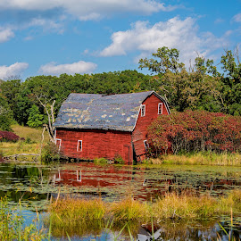 Sinking In by Erin Dybedahl - Buildings & Architecture Other Exteriors ( sinking, falling down, red barn, barn, fall,  )