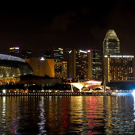Singapore Durian view by Marcel Eringaard - City,  Street & Park  Night ( skyline, night photography, durian, singapore, nightscape )