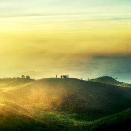 bukit teletabis by Fora Ginanjar Katamsi - Landscapes Mountains & Hills ( hill, hills, mountain, cloud, sunrise, morning )