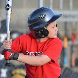 Batting by Kurt Bailey - Sports & Fitness Baseball (  )