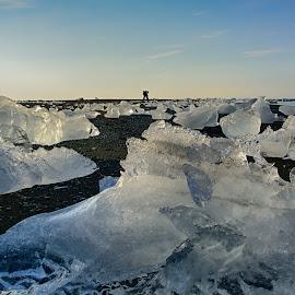 Glacier ice on beach by Magnús Möller - Nature Up Close Water ( glacier, ice, peace, sunrise, beach, man )