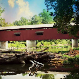 Covered Bridge by Dawn Gillon-Crowder - Buildings & Architecture Bridges & Suspended Structures ( water, red, nature, park, covered bridge, falls, parks, bridge, woods, country )
