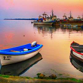 Boats by Maja  Marjanovic - Transportation Boats ( reflection, boats, summer, sea, transportation )