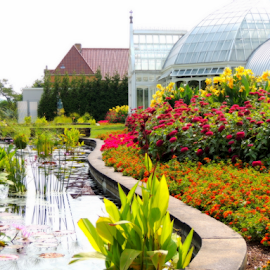 Phipps Conservatory by Denise Guthery - Buildings & Architecture Public & Historical (  )