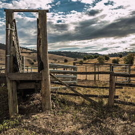 Stock Yards and Loading Ramp by Leoni Williams - Landscapes Prairies, Meadows & Fields