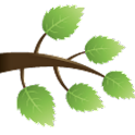 GedTree icon