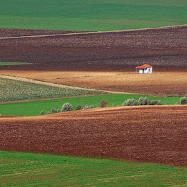 Lonely house by George Petridis - Landscapes Prairies, Meadows & Fields ( home, green, formations, ground, earth, house, small, fields, country )