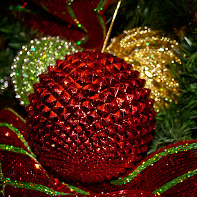 Red by Brenda Hooper - Public Holidays Christmas ( holiday, red, tree, green, christmas, gold, decoration, object,  )