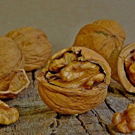 Nuts ... by Joseph Muller - Food & Drink Fruits & Vegetables (  )