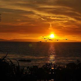 new resized sunset 2.jpg