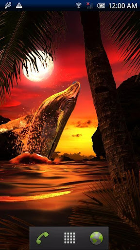 クジラ★SunsetOcean