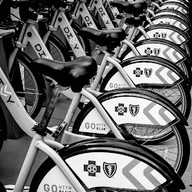 by Tara Miller - Transportation Bicycles