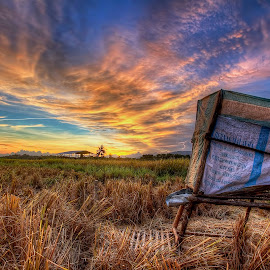 Harvest by Johan Wan - Landscapes Prairies, Meadows & Fields