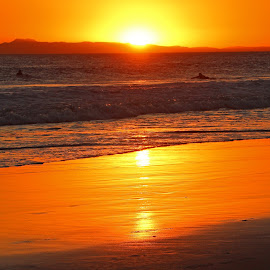 Newport Sunset by Jeannine Jones - Landscapes Sunsets & Sunrises (  )