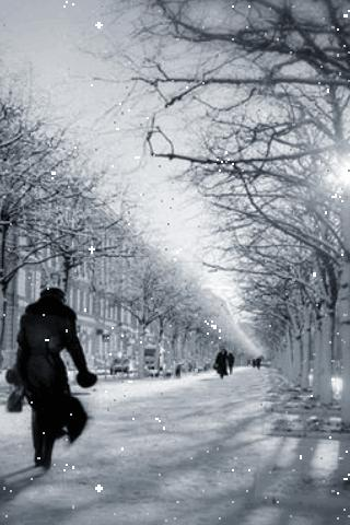 Snowy Street Live Wallpaper