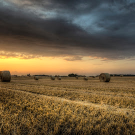 Harvested fields by Kim  Schou - Landscapes Prairies, Meadows & Fields ( clouds, hdr, sunset, lolland, fields )