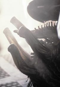Protuberancias en la espalda del Xenomorfo AlienEspalda