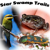 Star Swamp Trails