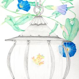 Frog in Lantern by Jo Soule - Drawing All Drawing ( inside, frogs, lanterns )