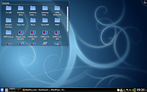 KDE4.1 on Lenovo