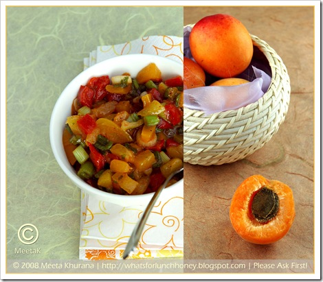 Apricot Salsa Diptych (01) by MeetaK