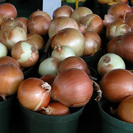 Onions! by Robin Morgan - Food & Drink Fruits & Vegetables ( onions, market )