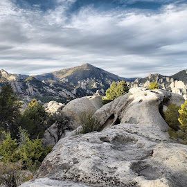 City Of Rocks  by Dave Bower - Landscapes Caves & Formations