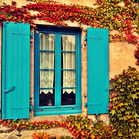 Brehat window by Dobrin Anca - Buildings & Architecture Other Exteriors ( holiday, wild, autumn, brehat, house, , fall, color, colorful, nature )