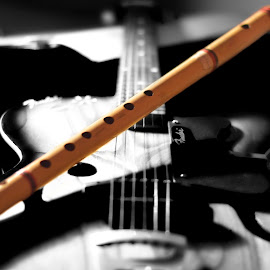 Soul by Sandeep Nagar - Artistic Objects Musical Instruments ( fluite, black and white, focus, guitar, indian classic, selective color, pwc )