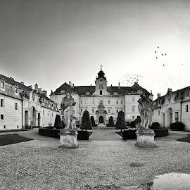 Valtice Castle by Lukas Fox - Buildings & Architecture Statues & Monuments ( valtice czech republick, castle )