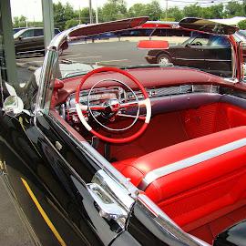 1954 Eldorado ( Cadillac )  3 by Yvonne Collins - Transportation Automobiles ( photography     city     street     1954 eldorado     cadillac     oley's pizza )