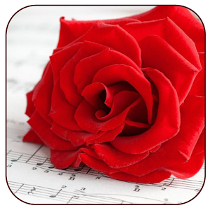 Romantic Pictures for Whatsapp - Android Apps on Google Play
