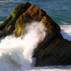 Feel by Gil Reis - Nature Up Close Water ( water, nature, waves, sea, portugal, rocks )