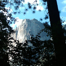 Yosemite by Tammy Jones Perdue - Instagram & Mobile Other ( phone, yosemite )