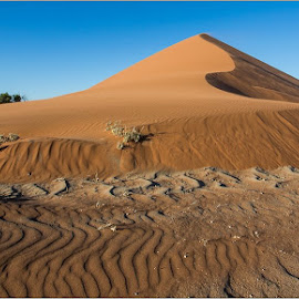 Dunes Foot by Rick Venter - Landscapes Deserts