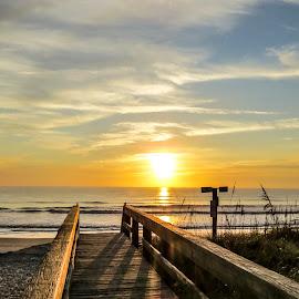 Pier Pressure by Patricia Rich - Landscapes Beaches ( sand, jacksonville, pier, sunrise, beach, morning )