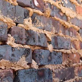 Building Bricks by Megan Bainton - Abstract Macro